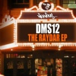 DMS12 Raydar (Original Mix)
