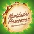 Various Artists Navidades Flamencas. Villancicos con Duende