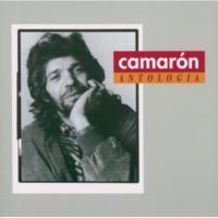 Camarón De La Isla/Ramón De Algeciras/Paco De Lucía Que Desgraciaitos Son (Tangos) (feat.Paco De Lucía)