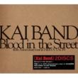 甲斐バンド Blood in the Street / 甲斐バンド 40th Anniversary tour in 日比谷野音