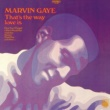 Marvin Gaye That's The Way Love Is