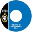 ヴァリアス・アーティスト The Boys Of Cameo Parkway Vol. 1