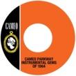 Various Artists Cameo Parkway Instrumental Gems Of 1964