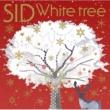シド White tree