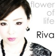 Riva Flower of Life