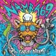 NAMBA69 21st CENTURY DREAMS