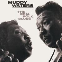 Muddy Waters Walkin' Blues