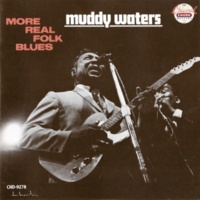 Muddy Waters Down South Blues