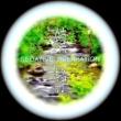 INOYAMA-LAND STREAM1(せせらぎ)