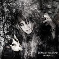 THE SOUND BEE HD CALLING
