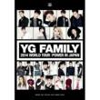 2NE1 YG FAMILY WORLD TOUR 2014 -POWER- in Japan