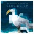 DJ Motive & Hideout Seaside(Original Mix)