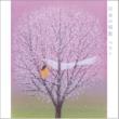小鳩 くるみ <COLEZO!>日本の唱歌 ベスト