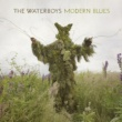 The Waterboys Destinies Entwined