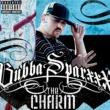 Bubba Sparxxx The Charm