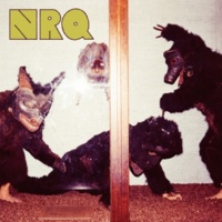 NRQ sui