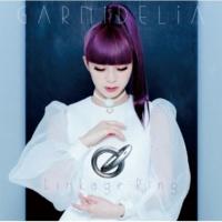 GARNiDELiA フタリ座流星群