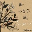 jujumo 森、つなぐ、風。