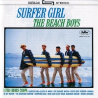 The Beach Boys Surfers Rule