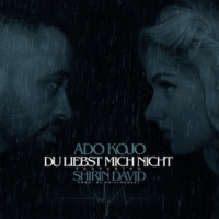 Ado Kojo/Shirin David Du liebst mich nicht (feat.Shirin David)