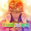 Various Artists Nervous February 2015 - DJ Mix