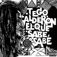 Tego Calderón/Kany García Y Quién Diría (feat.Kany García) [Album Version]