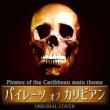 NIYARI計画 パイレーツ・オブ・カリビアン ORIGINAL COVER