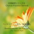 石山正明 合唱練習シリーズ8 ベートーヴェン/第九「歓喜の歌」 (テノール2パート用)
