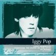 Iggy Pop ニュー・ヴァリューズ