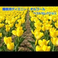 浜崎 vs 浜崎 自由への扉 (塔の上のラプンツェル) ~オルゴールバージョン~