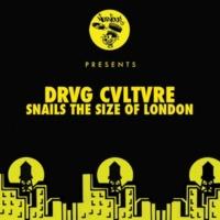 Drvg Cvltvre Vulture Lord (Original Mix)