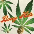 Long Beach Dub Allstars Bong Hits