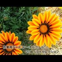 浜崎 vs 浜崎 小さな世界 (作業用オルゴールバージョン)