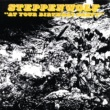 Steppenwolf At Your Birthday Party