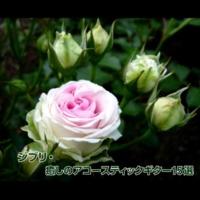浜崎 vs 浜崎 テルーの唄 (アコースティックギターバージョン)