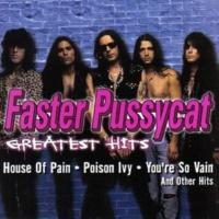 Faster Pussycat Bathroom Wall