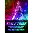 THE SECOND from EXILE EXILE TRIBE PERFECT YEAR LIVE TOUR TOWER OF WISH 2014 ~THE REVOLUTION~