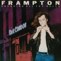 Peter Frampton Lost A Part Of You [Album Version]