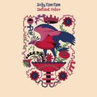 Birdy Nam Nam Defiant Order (UZ Remix)