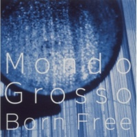 MONDO GROSSO What goes up must come down