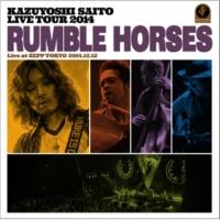 """斉藤 和義 透明の翼(""""Rumble Horses"""" Live at ZEPP TOKYO 2014.12.12)"""