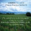 石山正明 合唱練習シリーズ15 ブラームス/ドイツ・レクイエム Op. 45 (ソプラノ2パート用)