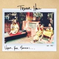 Trevor Hall Unpack Your Memories