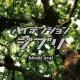 新井 大樹 オープニング2
