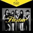 FIESTAR You're Pitiful