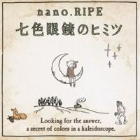 nano.RIPE スノードーム