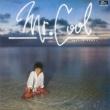 桑江知子 Mr.COOL +8