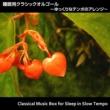 浜崎 vs 浜崎 睡眠用クラシックオルゴール ~ゆっくりなテンポのアレンジ~