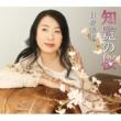 日野美歌 知覧の桜