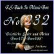 石原眞治 バッハ・イン・オルゴール232 /宗教的歌曲とアリア BWV479からBWV488